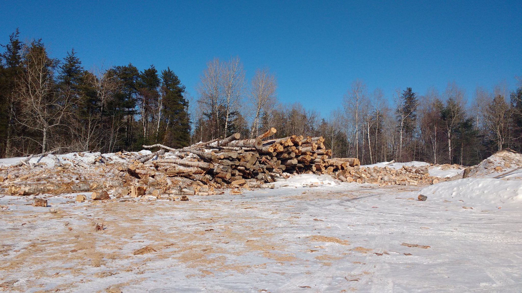 Quebec offers a meagre pile of wood for heating though, logged from ABL territory. This is the extent of any resource revenue sharing. https://t.co/byIA5Dk2B4
