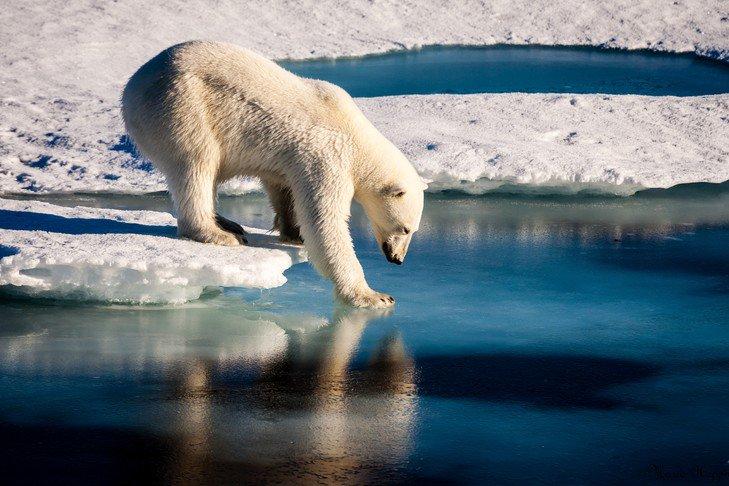 Climat: l&#39;ONU alerte sur les phénomènes extrêmes en 2017  http:// ow.ly/SQYQ30ab26c  &nbsp;    - @LaCroix #climate #climatechange<br>http://pic.twitter.com/dKLc9eFZIJ