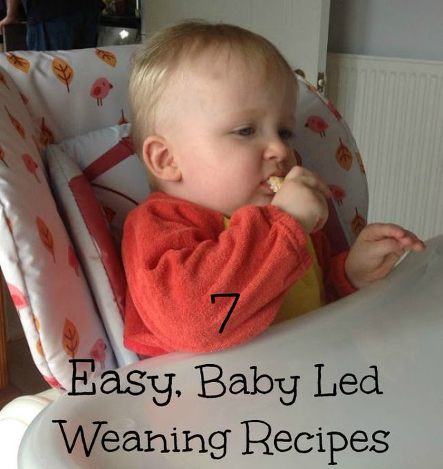 7 Easy Baby Led Weaning Recipes