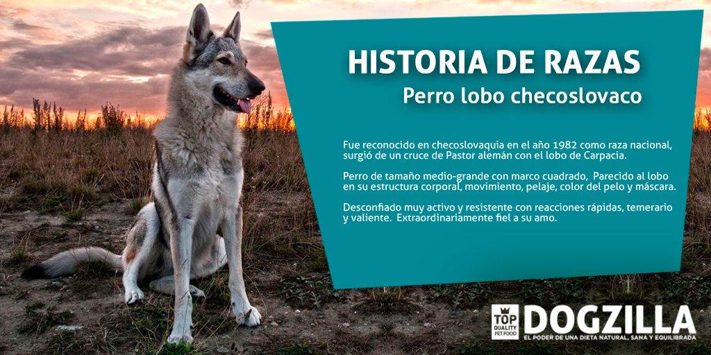Historiaderazas Hashtag On Twitter