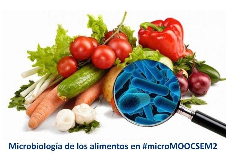 Thumbnail for 2.9. Microbiología de los alimentos