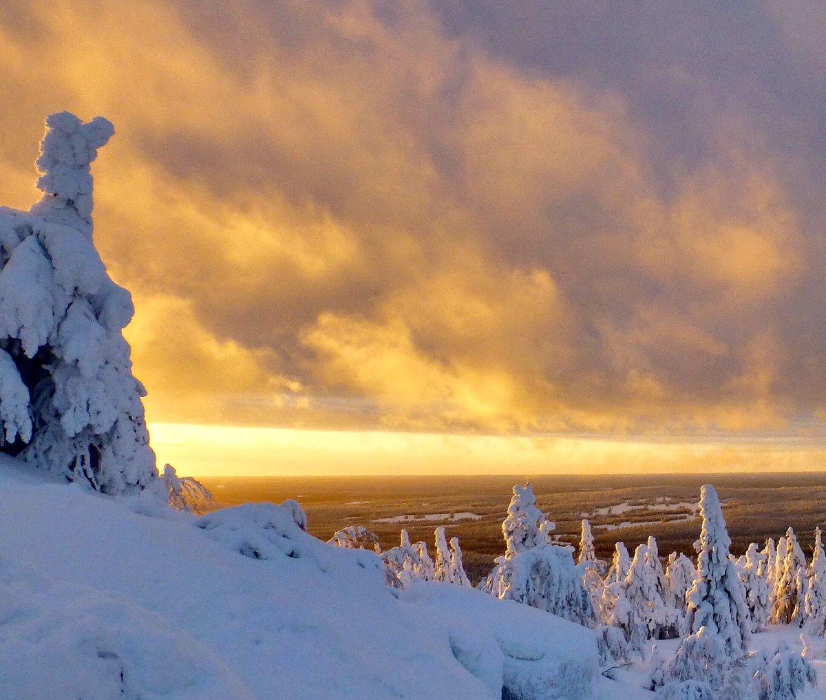 Check Lapland #itineries at  https:// diytrips.tips  &nbsp;   #WinterWonderland #Travel #wanderlust #traveldiaries #travelblogger #digitalnomads #Tips<br>http://pic.twitter.com/7mJkRyV1ug
