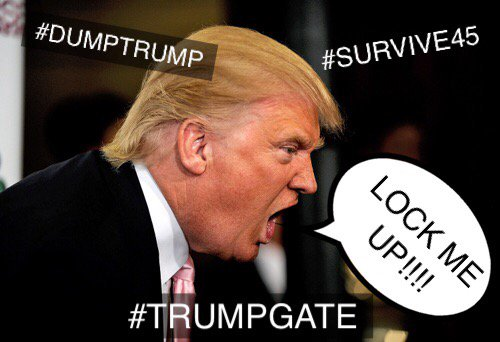 @realDonaldTrump @POTUS Get out of our White House. #TRUMPGATE #SURVIVE45 #DumpTrump #FakePOTUS<br>http://pic.twitter.com/9qhNyaz1me