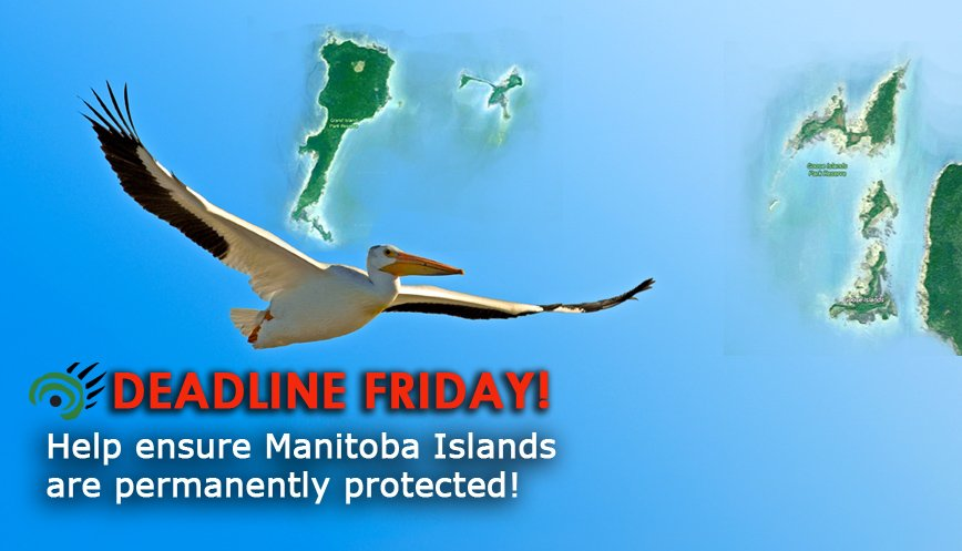 #Islands of #LakeWinnipegosis - #new #provincialparks?  Take action, your #voice is needed   http:// ow.ly/zirD30achXD  &nbsp;    #wetlands #enviro <br>http://pic.twitter.com/LRlbtIZuRd