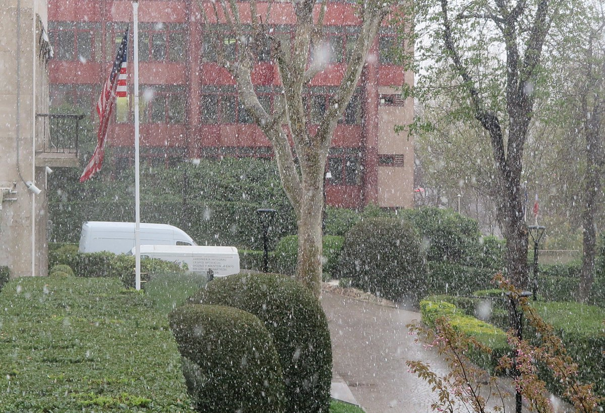 ❄❄No es Nueva York o Boston. Así vemos la #nieve desde la Embajada de...