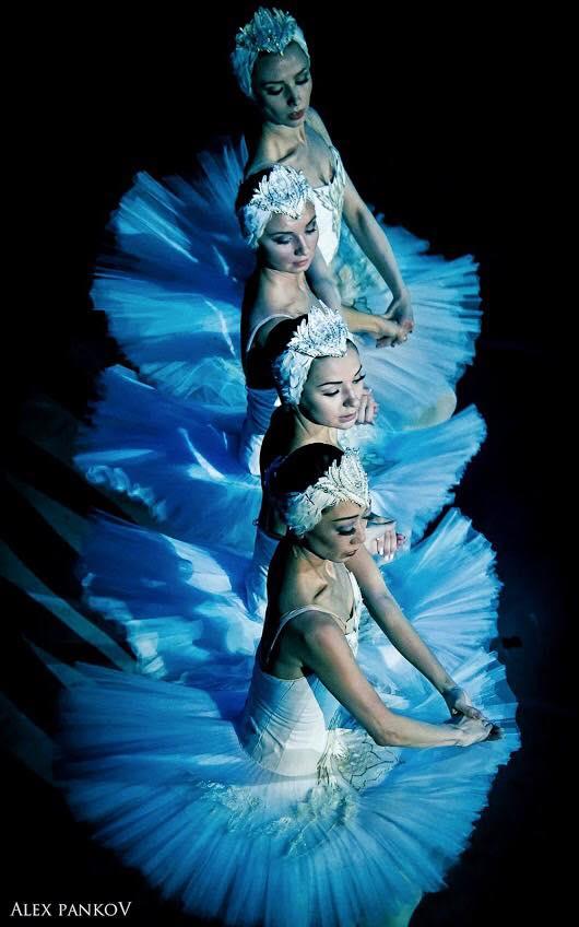 Swans by Alex Pankov (2016) #ballet #beauty #grace #art ❤️💃❤️ https://...