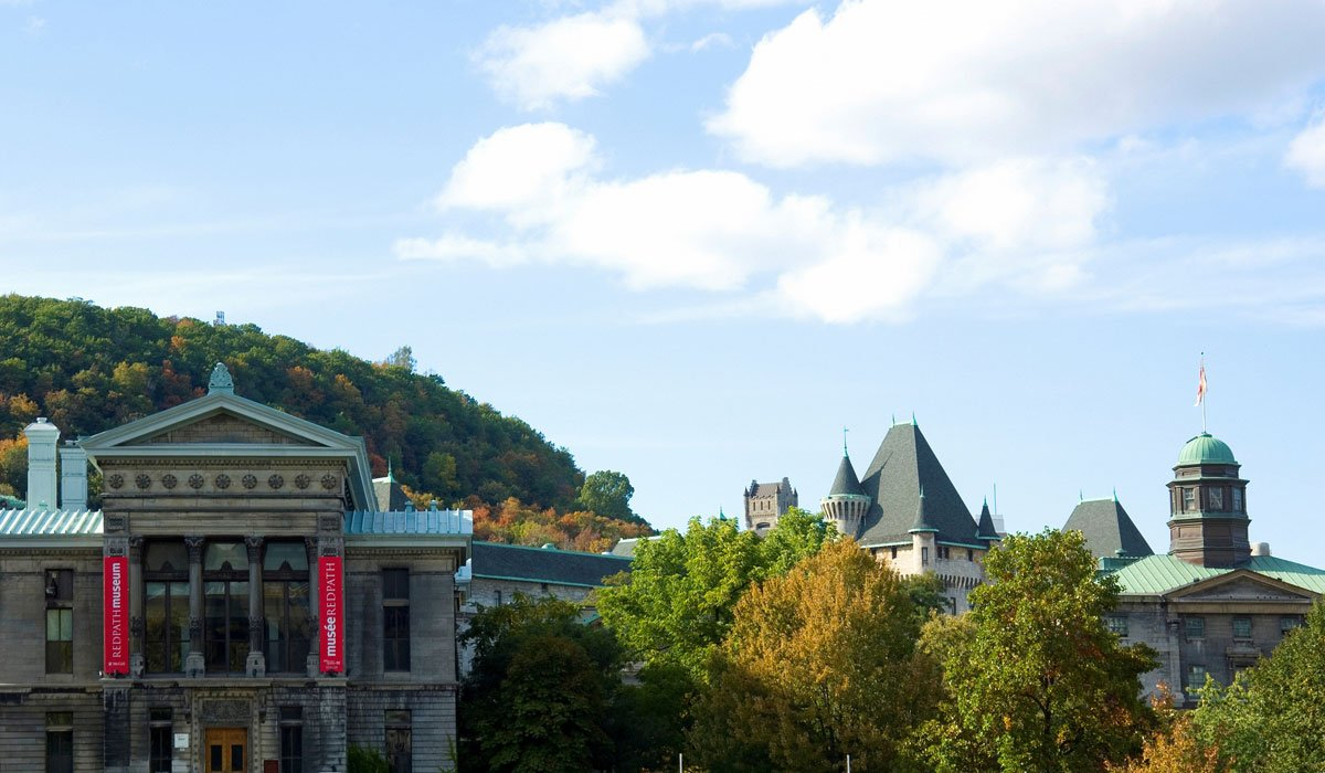 Andrew Potter resigns from McGill position after Quebec column flap ht...