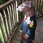 Look who I met today @DartmoorDbn lunch #PotterOtter @moorotters @MoorlandGardenH