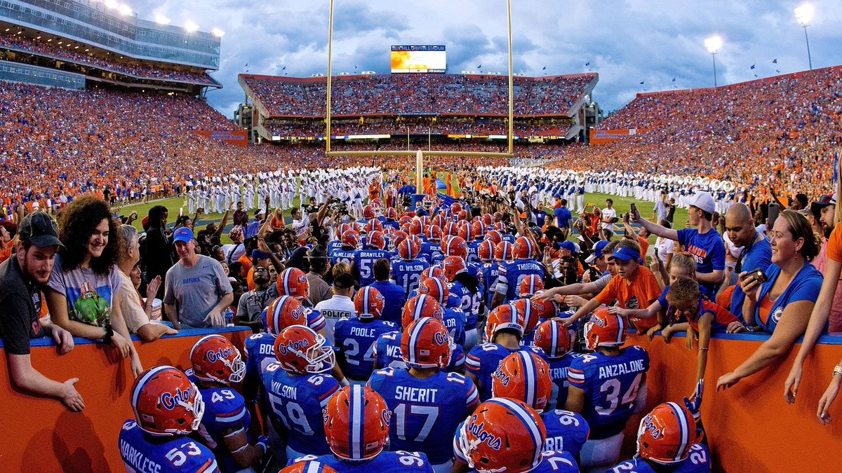 Image result for university of florida football