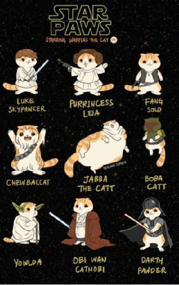 #SciFiPawty is happening at a death star near you this Saturday 11am - 11pm EDT. Be there! https://t.co/JAWO2FB9NJ
