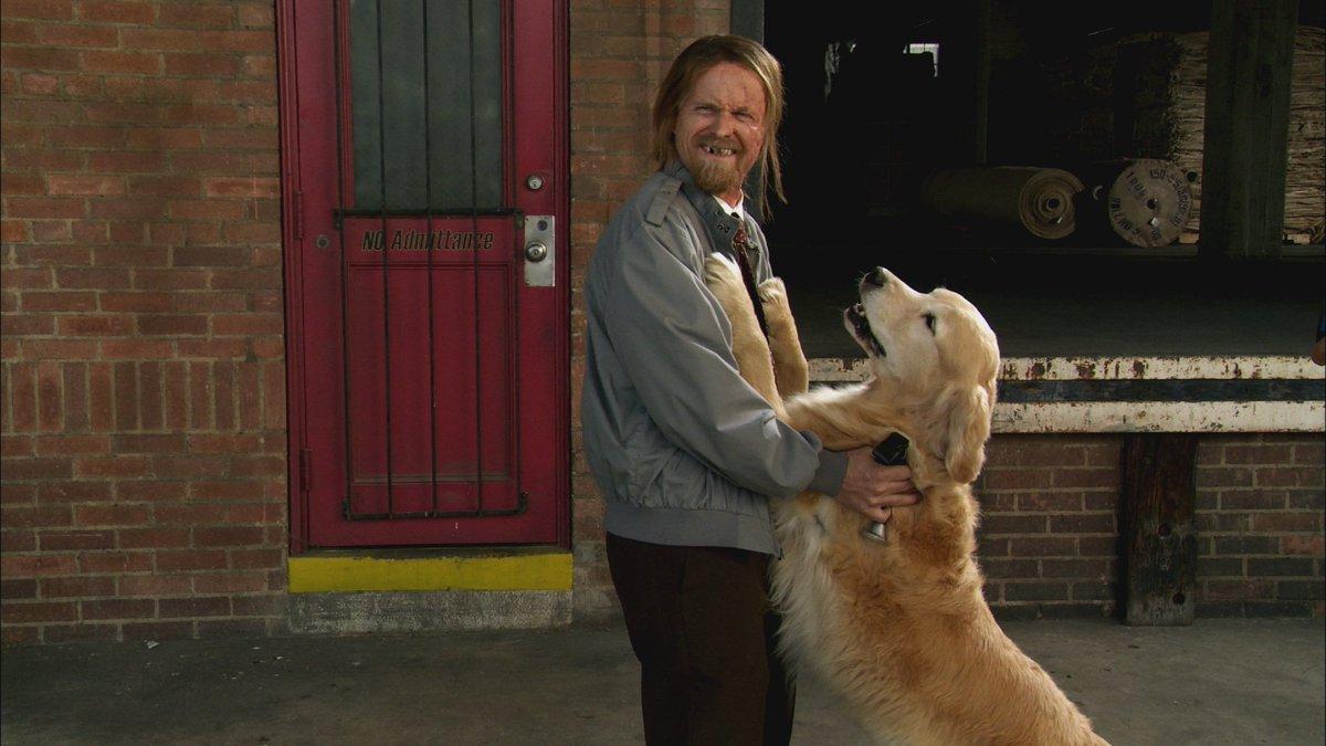 Puppy love is real love. Happy #NationalPuppyDay. #SunnyFXX <br>http://pic.twitter.com/z6tDnKylVt
