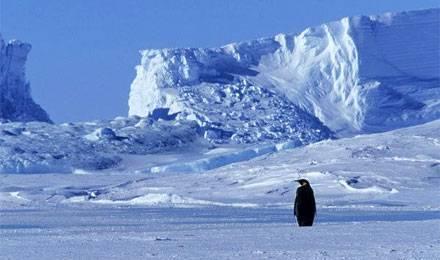 Espace, Antarctique, home, asile, politique et #BXL underground : 8 nouvelles #séries #RTBF (dont 5 en 26 minutes) &gt;  http:// bit.ly/2mVAJGL  &nbsp;  <br>http://pic.twitter.com/YSsz13xp4z