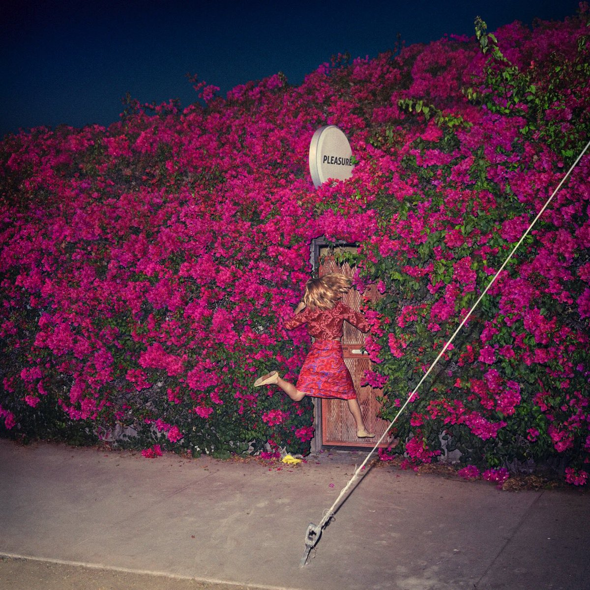 We can't wait for April 28th: the official release date of @FeistMusic...
