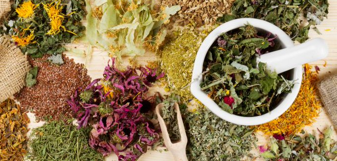 Herbal Medicines for Skin Care