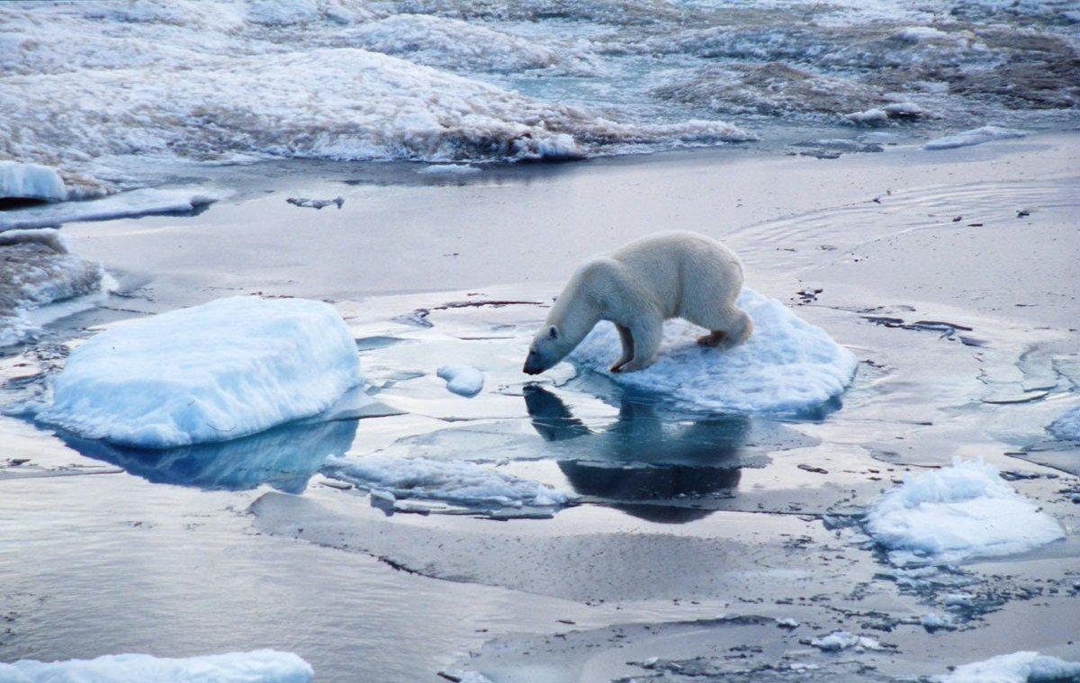 Les glaces de l&#39;#Arctique et de l&#39;#Antarctique sont au plus bas depuis 38 ans. La transition écologique est une urgence pour notre survie<br>http://pic.twitter.com/vRoYHKR3Pf