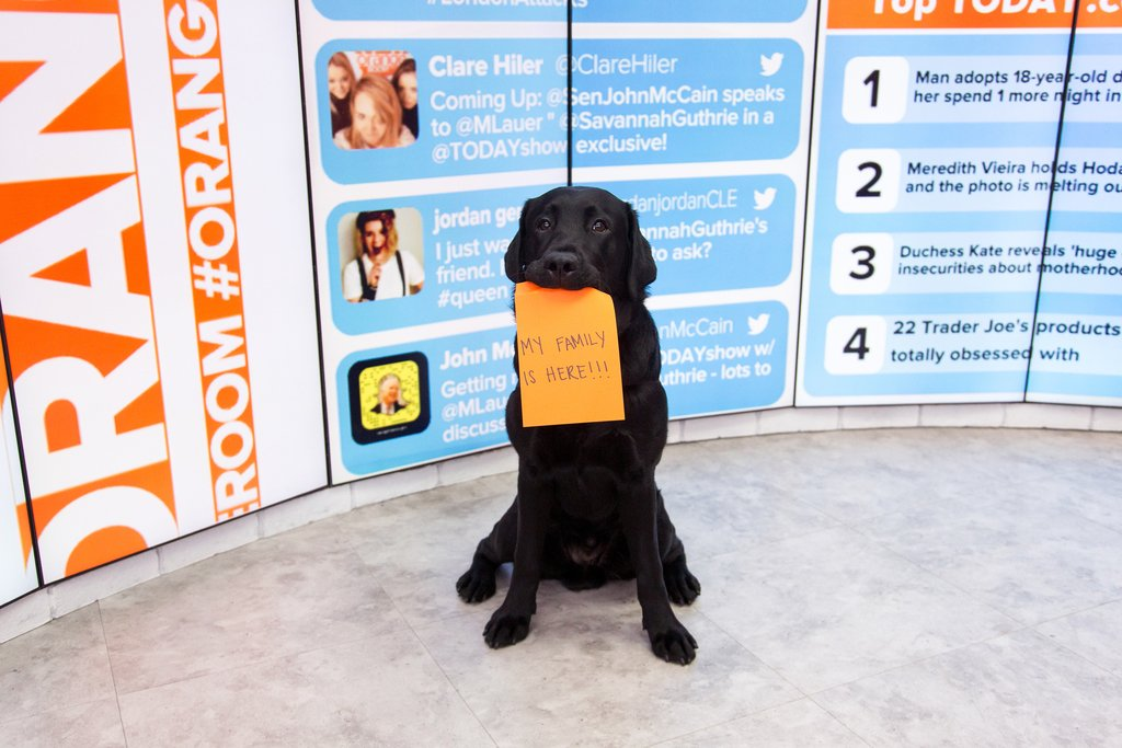 Can\'t wait to introduce you guys to my family! #TODAYPuppy