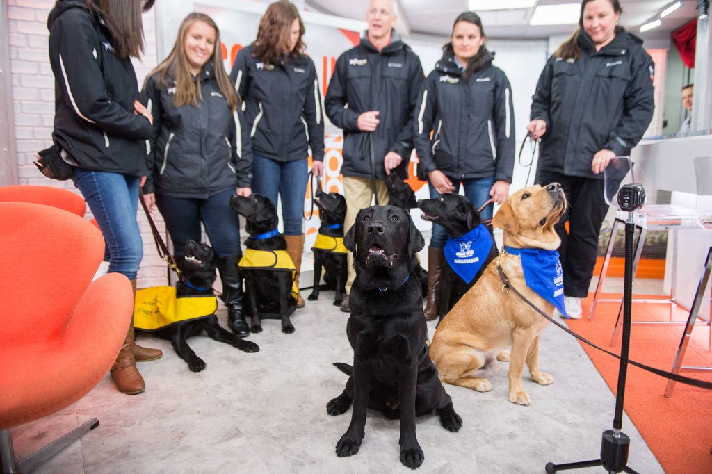 So happy my fam is here! #TODAYPuppy