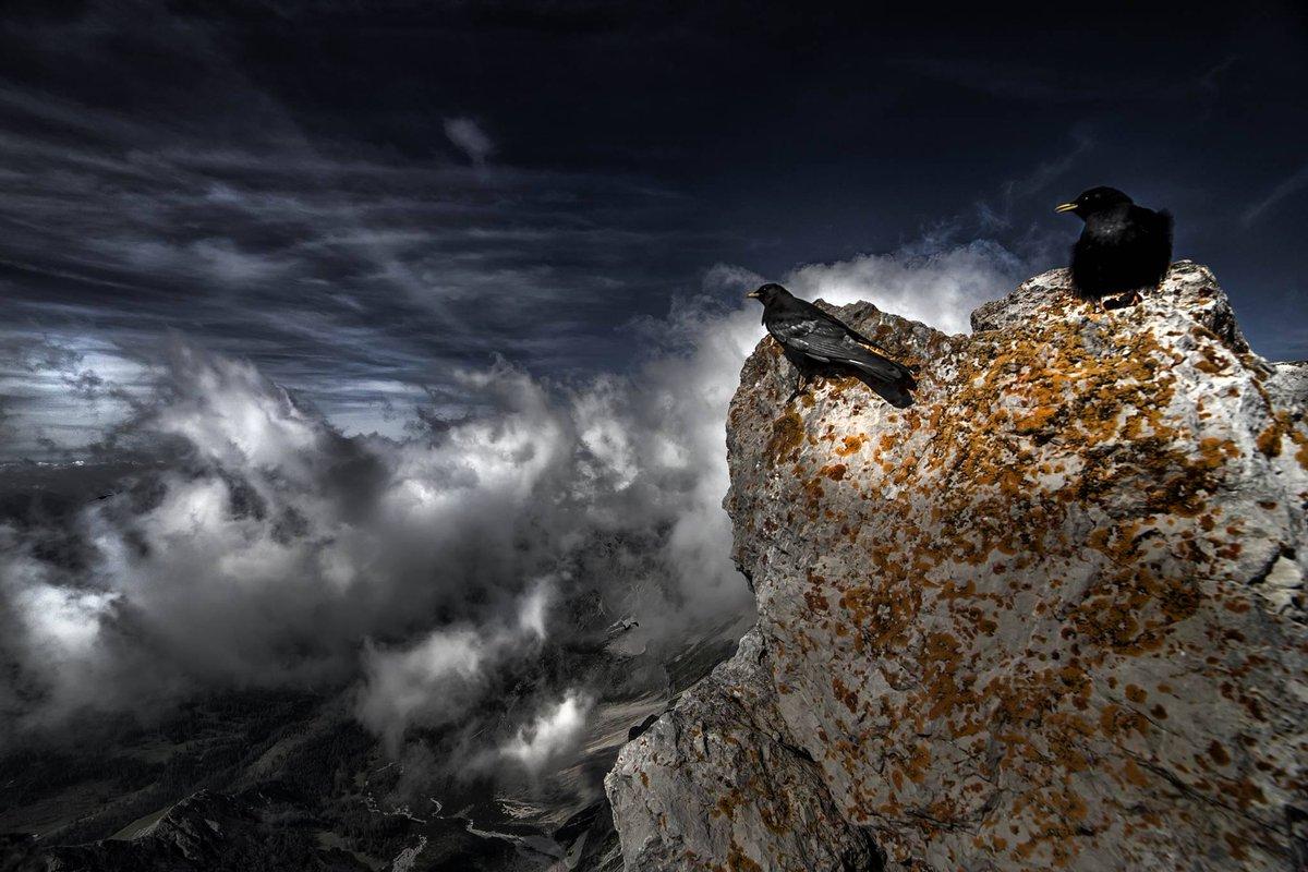 Mystisches Foto vom #DachsteinGletscher #Österreich  (c) Tóth Zoli htt...