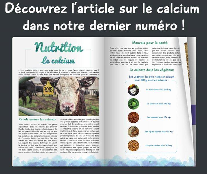Envie de découvrir notre #article sur le #calcium ?  RDV ici :  http:// fr.calameo.com/read/005101900 2d254582e4b8?authid=HZGyhShxiOGO &nbsp; …   #magazine #vegan #nutrition #végétal<br>http://pic.twitter.com/7Mzn4QMTM2