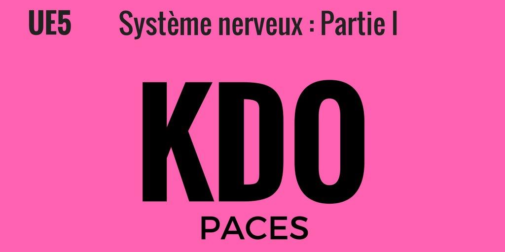 #PACES : Le #cervelet #partie #1 N&#39;hésitez pas à rt et à commenter   http:// ow.ly/TPBs30a73BU  &nbsp;  <br>http://pic.twitter.com/9LAubLYzPn