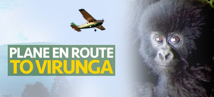 The LCA plane is being flown to Virunga National Park right NOW.  Follow the route here:   http:// LCASavingGorillas.org  &nbsp;   #ferrypilot #onschedule<br>http://pic.twitter.com/OuN4owhgwz