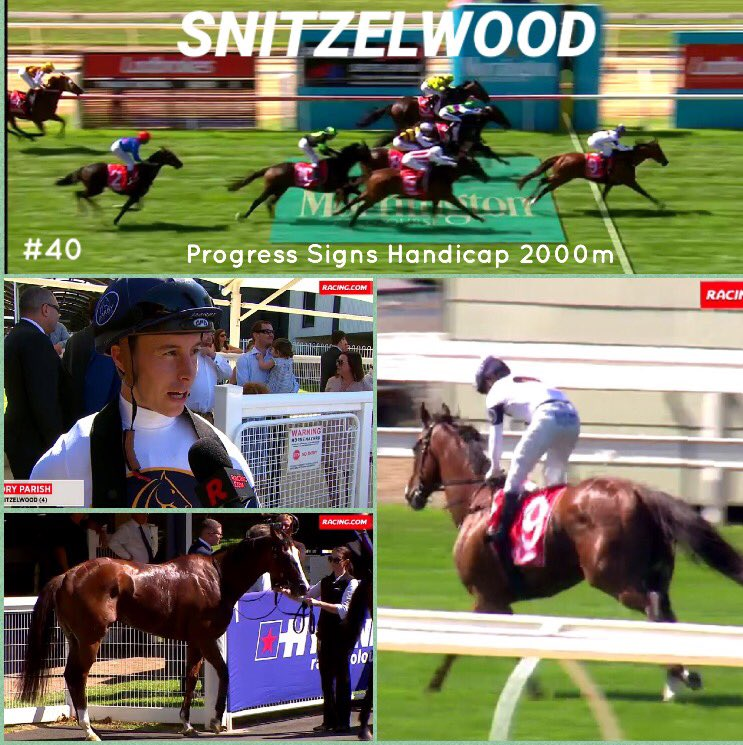 Congratulations to all our owners, trainers @lindsayparkrace &amp; Cory Parish bringing up Snitzelwood 9th career win. #Tough #Woody #40 <br>http://pic.twitter.com/ewf48Yfztr
