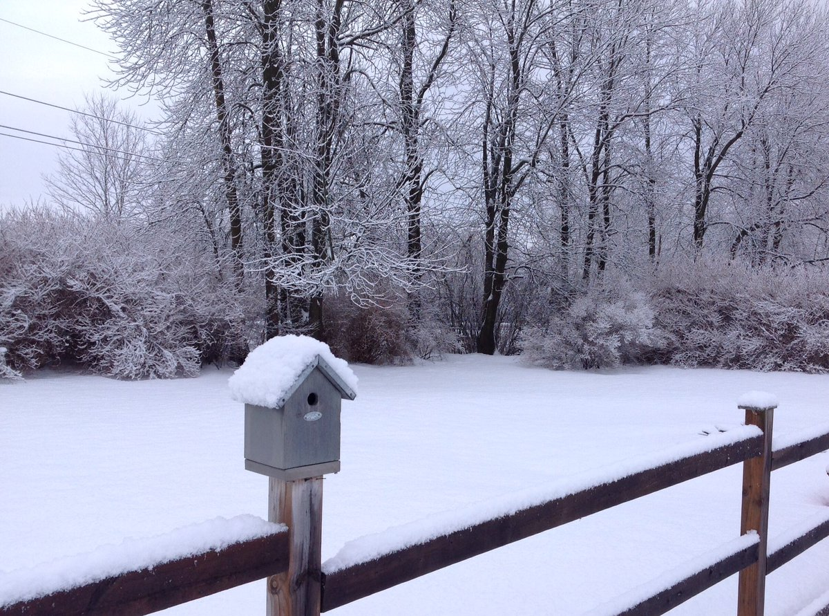 When April Fool&#39;s Day comes a week early! #WinterWonderland #OxfordMills<br>http://pic.twitter.com/vZz5SSX2sb