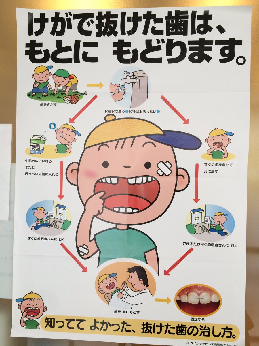 歯医者で見かけたポスター。子どもが歯を折ることもあり得るだろうから、知っておこう