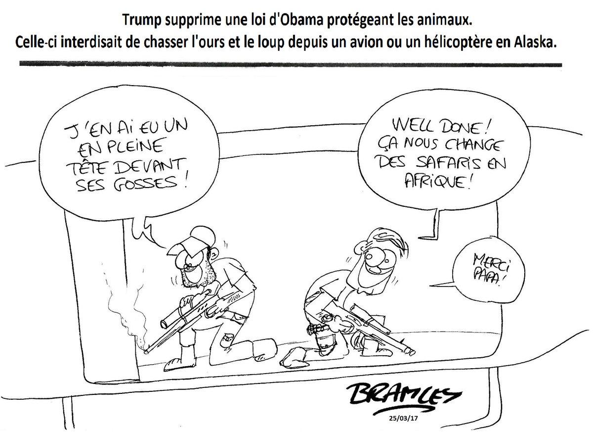 #Trump supprime une loi d&#39;#Obama qui protégeait les animaux de la #chasse. @AFAAD4 @CollectifAnimal<br>http://pic.twitter.com/wKl0maCUhQ