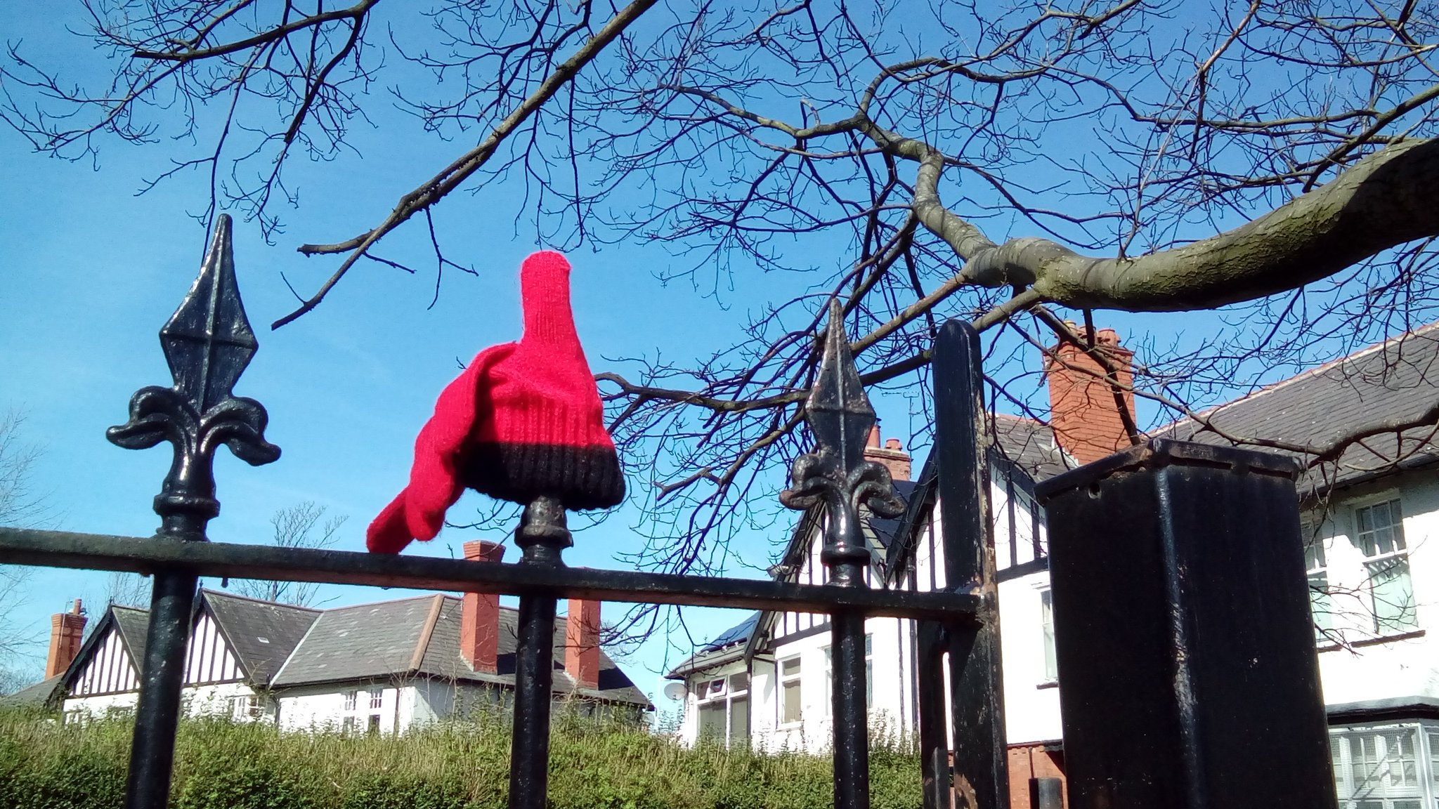 RT @digbydavies: Glove up Birkenhead Park @almurray https://t.co/GuDGYhBKbo