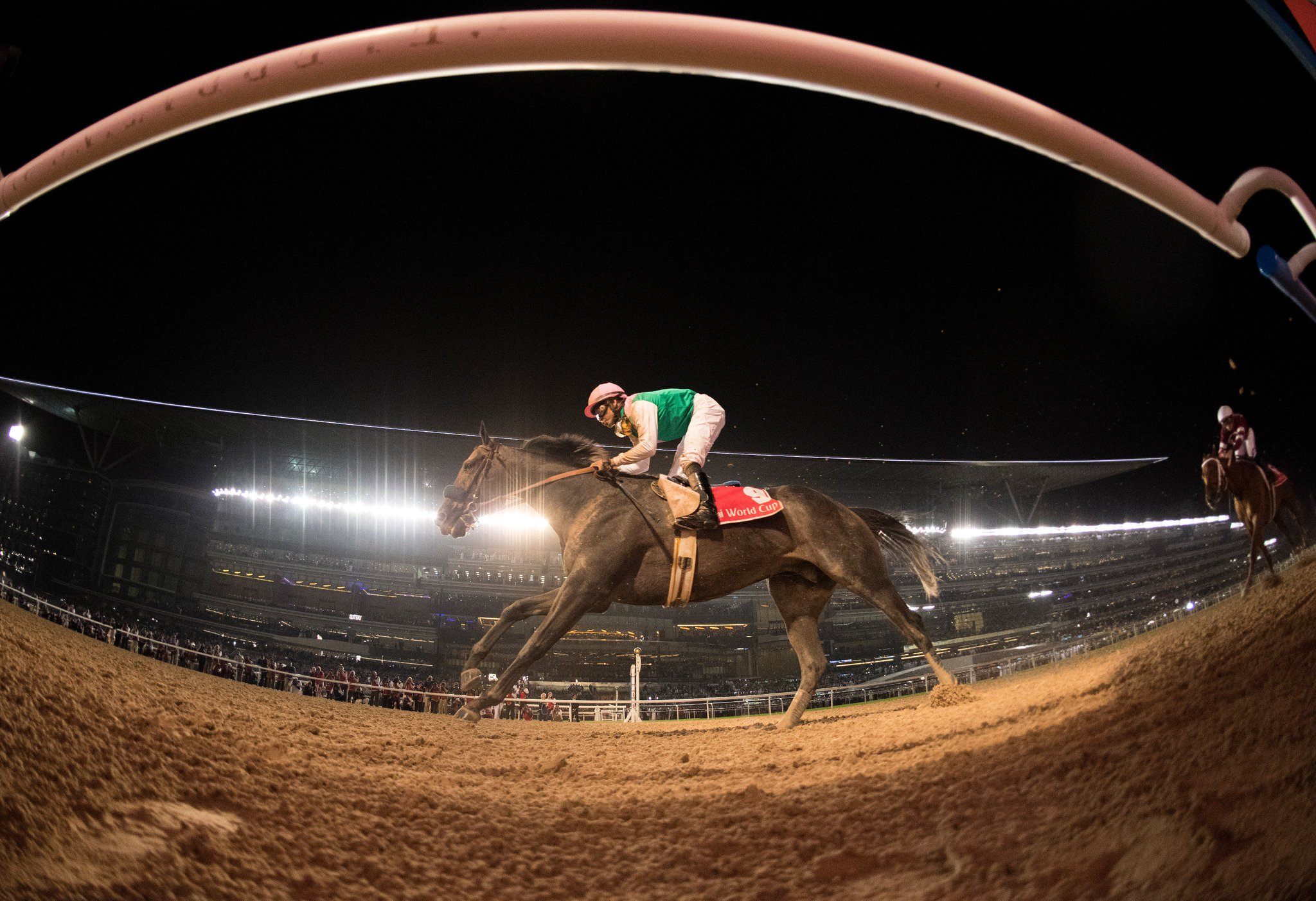 Arrogate And Smith On Top Of The World