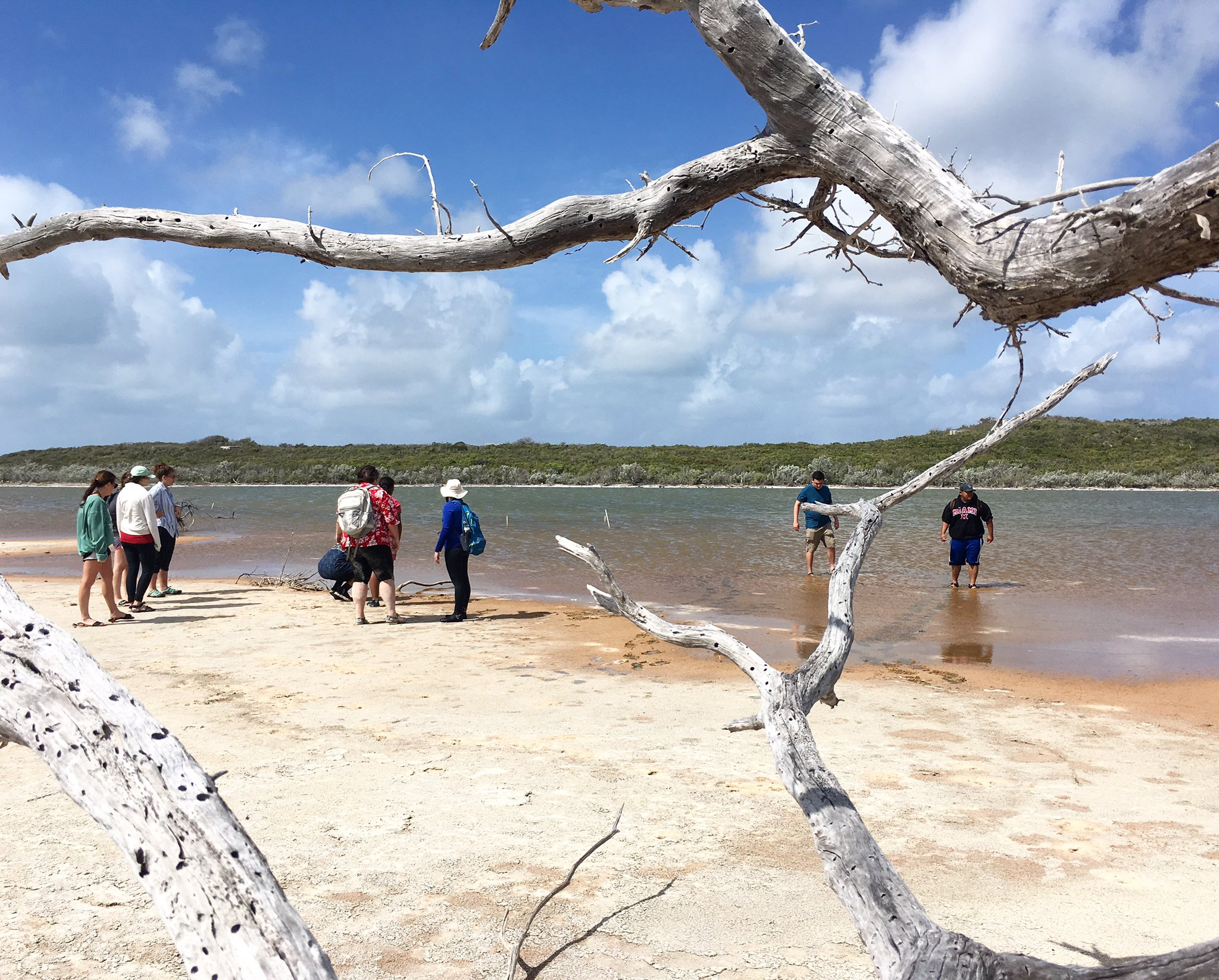 @PaleoMiamiOH @miamiuniversity Exploring the inland hypersaline lakes on the east side of San Salvador #MiamiOH #Bahamas #fieldtrip https://t.co/D0aEOuVL5f