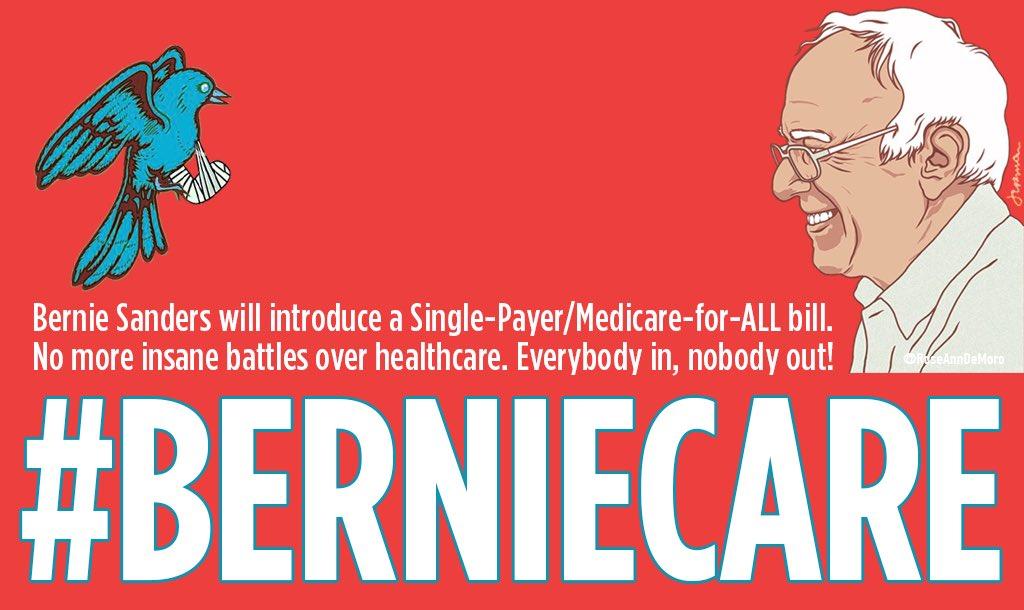 On the anniversary of #BirdieSanders, nurses celebrate @BernieSanders&#39; plan to introduce a #Medicare4All bill in the Senate! #JusticeLeague<br>http://pic.twitter.com/I6LgFM4qJt
