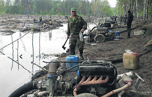 Полицейские пресекли незаконную вырубку леса под Белой Церковью - Цензор.НЕТ 5638