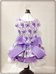 PURPLE FLORAL PAISLEY HARNESS DRESS! Visit:   #dogs #dogsoftwitter #dogdress #puppy @PoshPuppy
