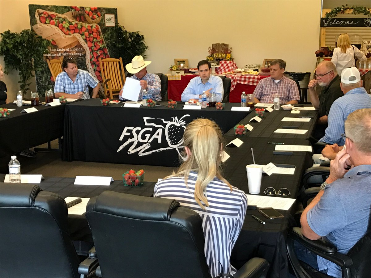 Was in #Florida strawberry country today to discuss federal policies with @FlaStrawberries. #sayfie  http:// bit.ly/2n5oI2a  &nbsp;  <br>http://pic.twitter.com/uuW6sK1XnL