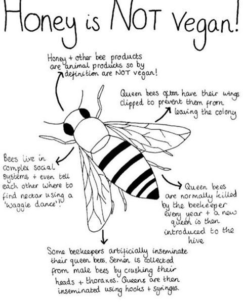 Honey is probably the product most frequently mistaken as vegan-friend...