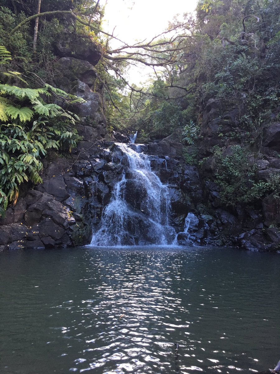 Oahu is so beautiful. #hiking #Waterfall #hawaii
