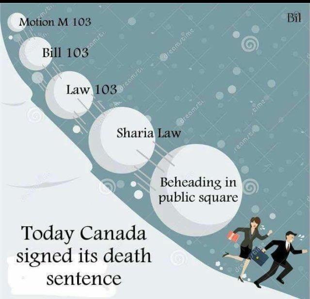 @maggydechantal #Trudeau est un traître vendu à l&#39;islam radical.. Probablement converti lui &amp; son frère @MClauddia  sera islamisé avec lui<br>http://pic.twitter.com/QqGhvO7iV6