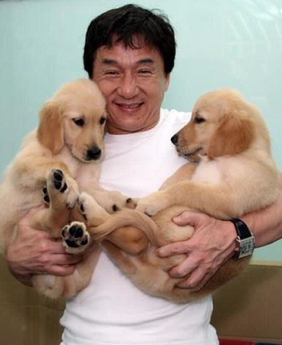 ""\"""" Jackie Chan turns 63 today!   Happy bday, legend More shine to your armour""556|680|?|en|2|3321bbc444d5926a524a04fde51bbce1|False|UNLIKELY|0.30538246035575867