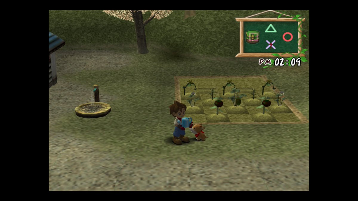 download harvest moon a wonderful life for pc full version