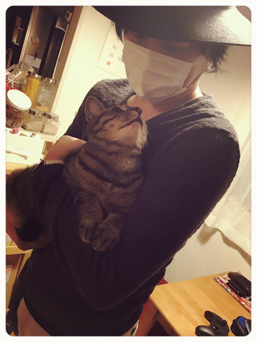 そして中村さんは今日もベルを愛で散らかしてくれましたよと。抱っこが上手でベルもとてもリラックスして満足げ(*´∀`) https://t.co/lQcaZDghZ6