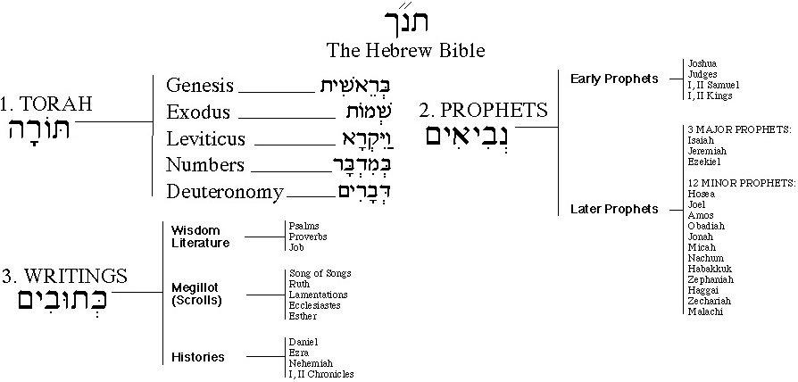 Torah תמונה