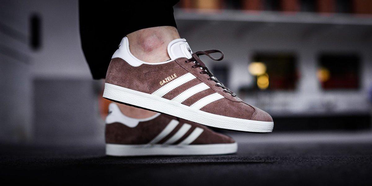 adidas gazelle brown white