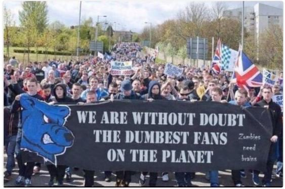 Image result for the dumbest fans on the planet