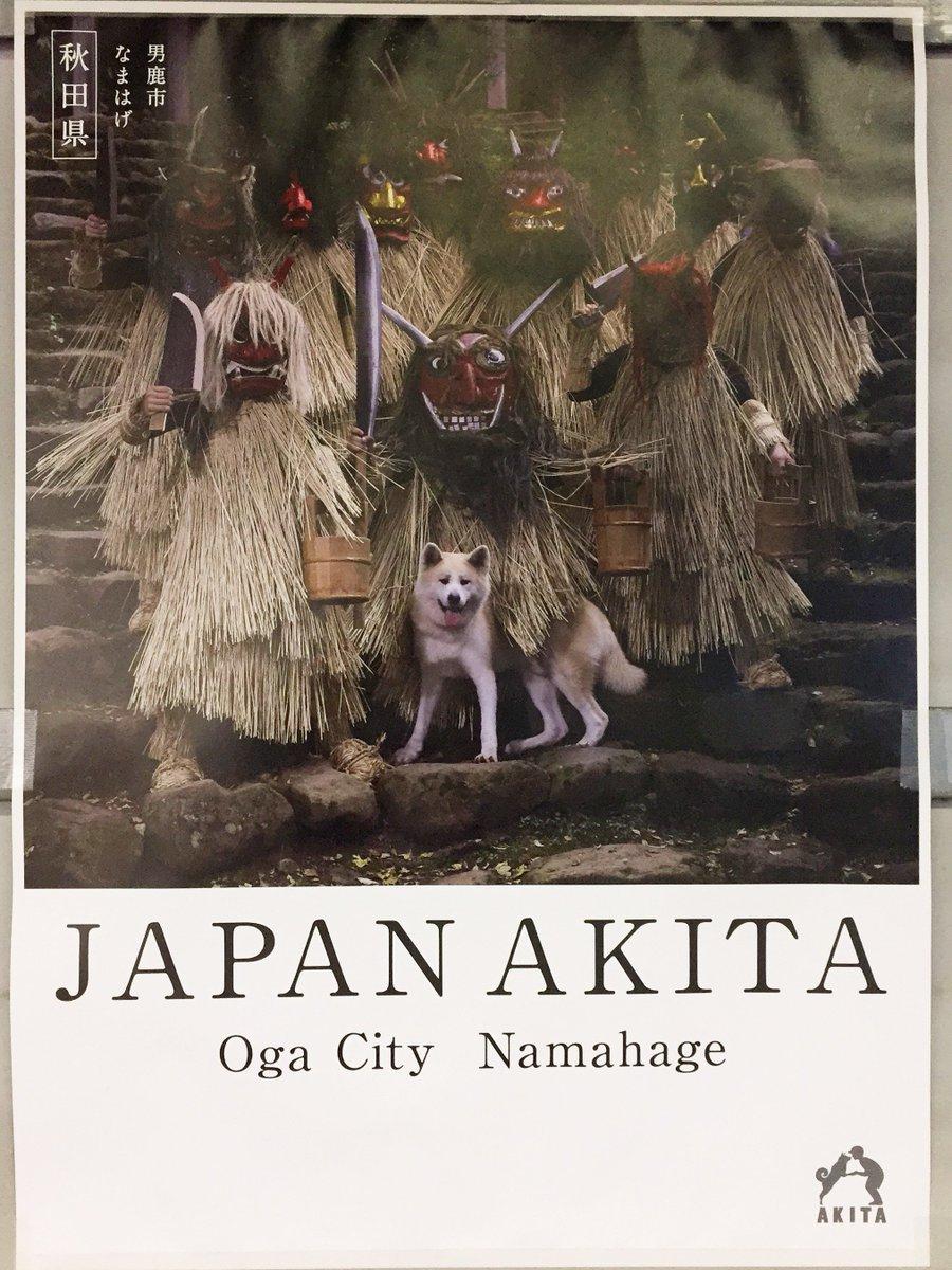 今日,某駅で見かけた秋田県のポスター!かっこよすぎ!(わんこ役得w) #秋田 他にも全部で10枚くらいあった。