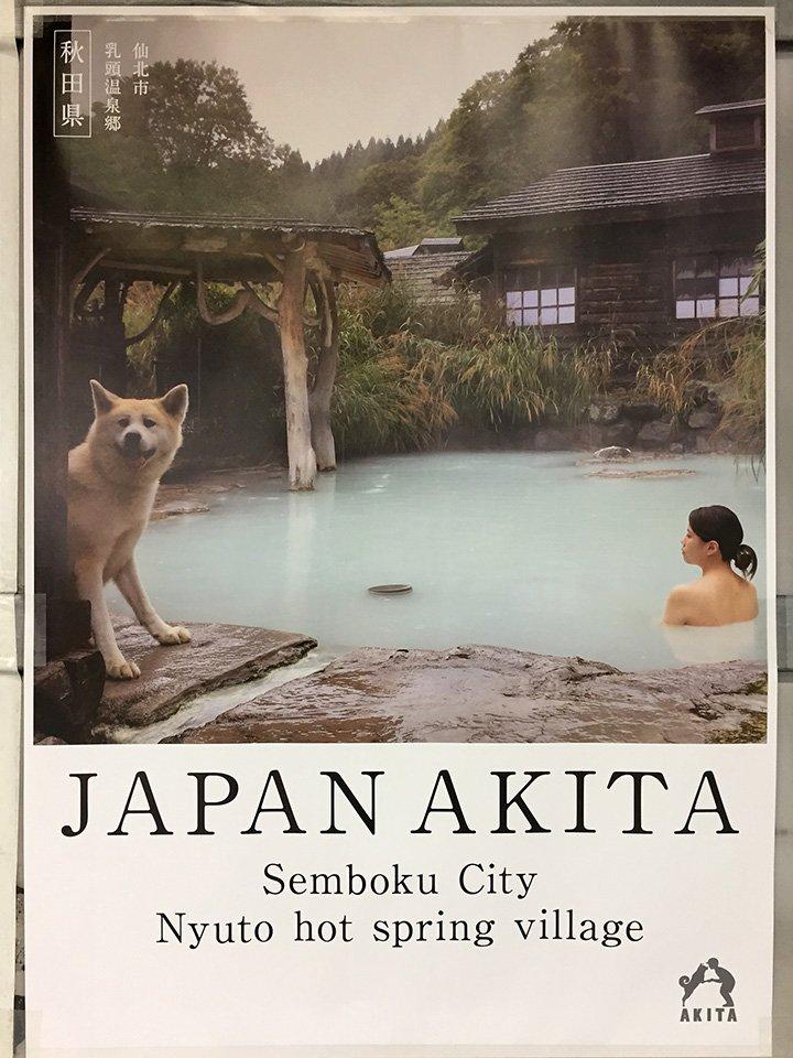 わんこもご満悦w秋田県の観光ポスターがかっこいいw