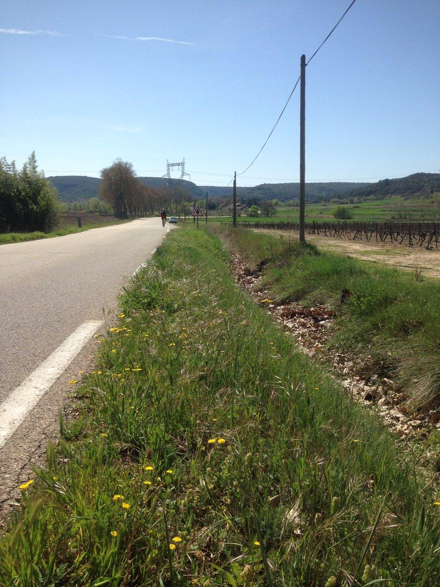#DéveloppementDurable 2ème année du fauchage raisonné bords des routes #Gard = nature préservée et biodiversité favorisée  <br>http://pic.twitter.com/syrn2idnjB