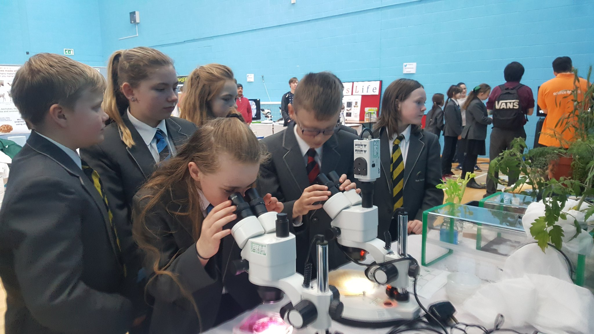 At Leeds Festival of Science exploring the wonders of plants and the human body #musicfederation #LFoS17 @STEMatLeeds https://t.co/7zxpWkZWmb