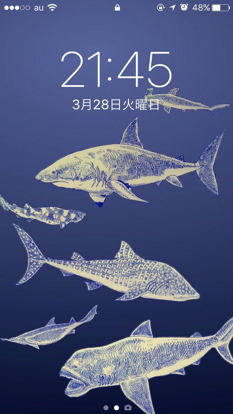 Nemunoki Paper Item در توییتر 自分用のサメスマホケースが届いた